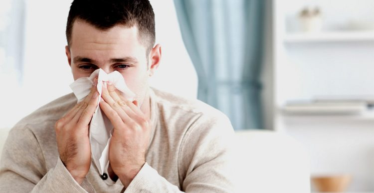 Allergy and the respiratory system